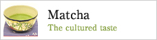 Matcha The cultured taste